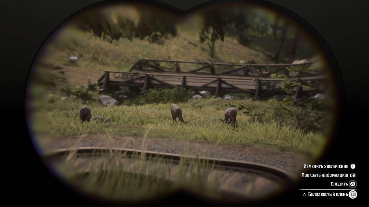 Гайд Red Dead Redemption 2 - 14 геймплейных секретов, о которых вы могли не знать